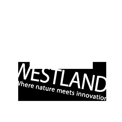 westland_WIT